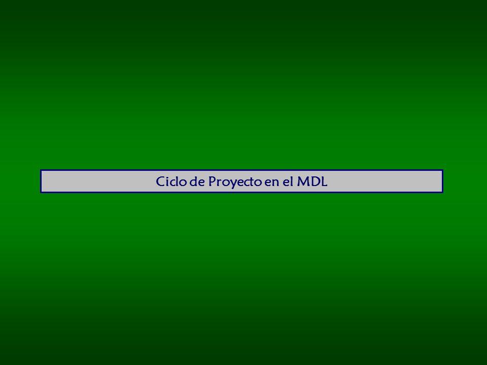Ciclo de Proyecto en el MDL
