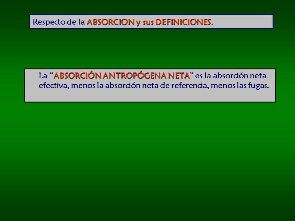 ABSORCION y sus DEFINICIONES Respecto de la ABSORCION y sus DEFINICIONES.