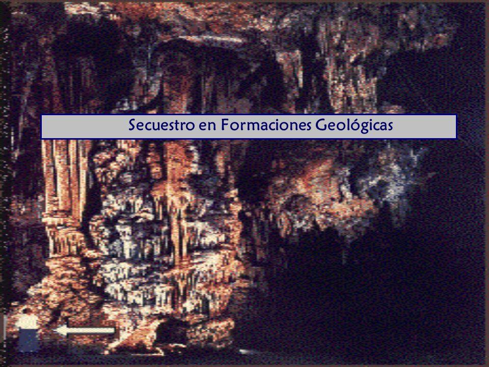 Secuestro en Formaciones Geológicas