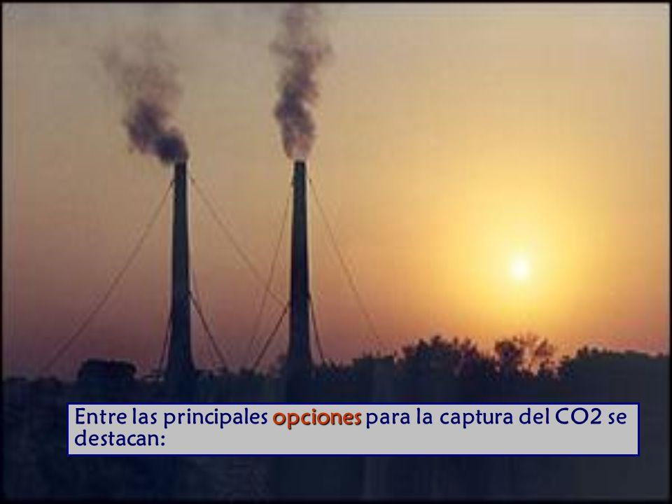 opciones Entre las principales opciones para la captura del CO2 se destacan: