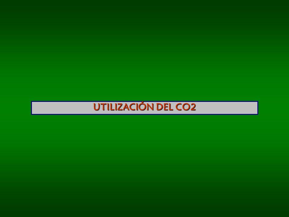 UTILIZACIÓN DEL CO2
