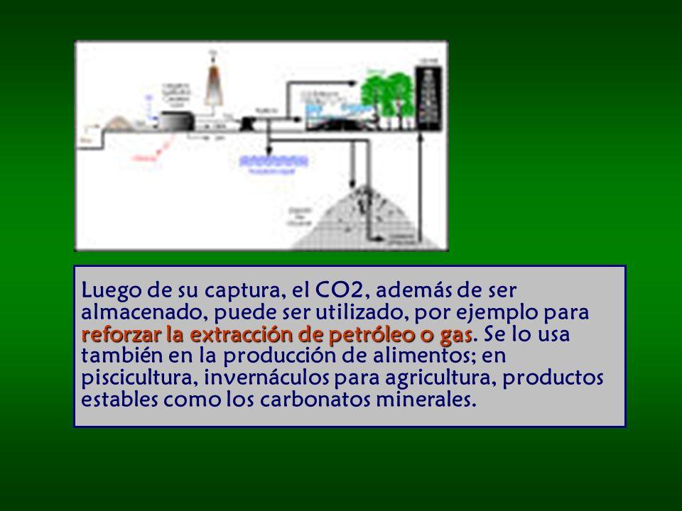 reforzar la extracción de petróleo o gas Luego de su captura, el CO2, además de ser almacenado, puede ser utilizado, por ejemplo para reforzar la extracción de petróleo o gas.