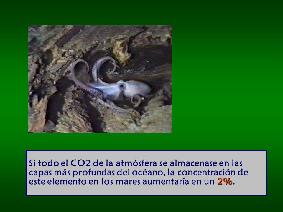 2% Si todo el CO2 de la atmósfera se almacenase en las capas más profundas del océano, la concentración de este elemento en los mares aumentaría en un 2%.