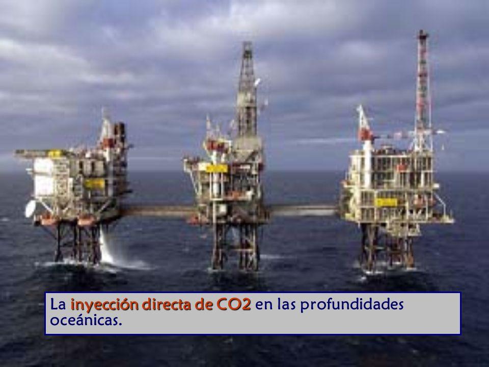 inyección directa de CO2 La inyección directa de CO2 en las profundidades oceánicas.