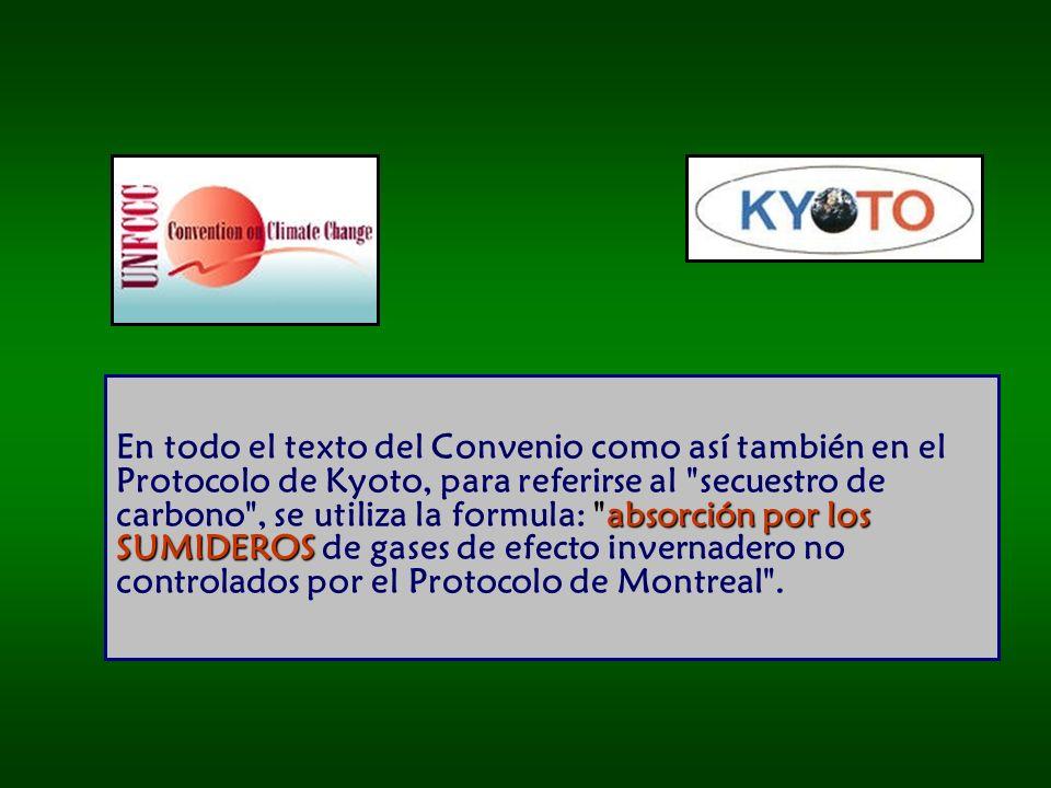 absorción por los SUMIDEROS En todo el texto del Convenio como así también en el Protocolo de Kyoto, para referirse al secuestro de carbono , se utiliza la formula: absorción por los SUMIDEROS de gases de efecto invernadero no controlados por el Protocolo de Montreal .