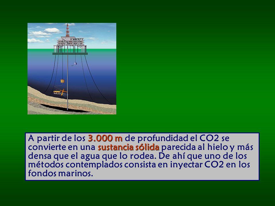 3.000 m sustancia sólida A partir de los 3.000 m de profundidad el CO2 se convierte en una sustancia sólida parecida al hielo y más densa que el agua que lo rodea.