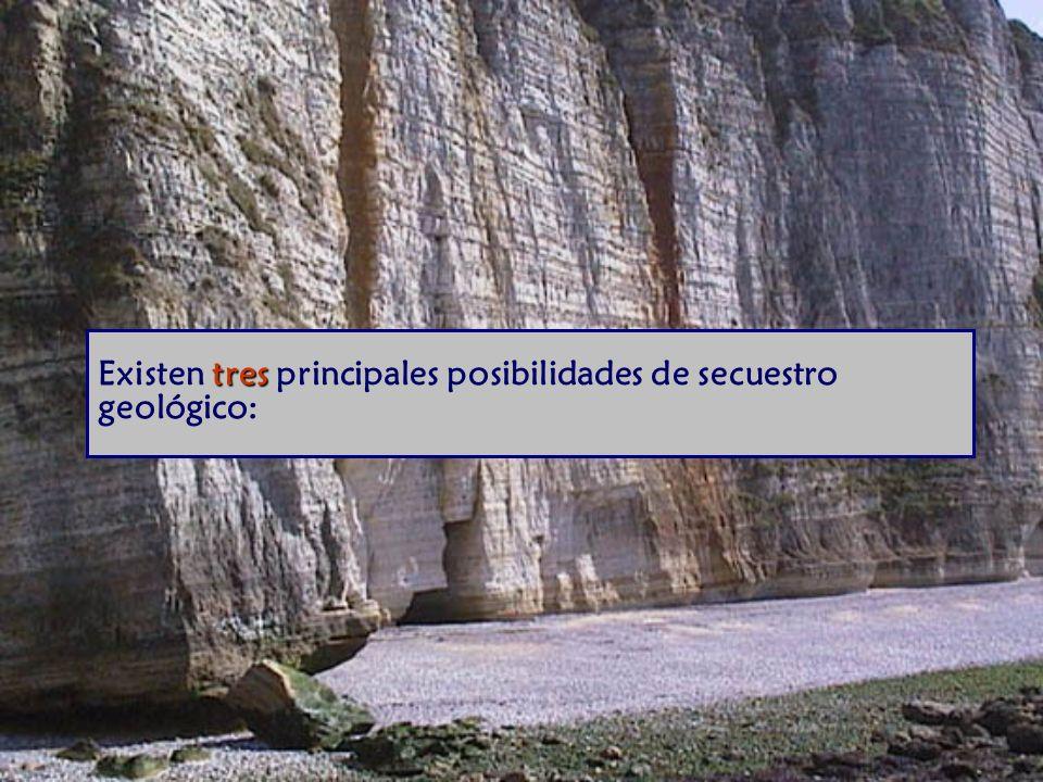 tres Existen tres principales posibilidades de secuestro geológico: