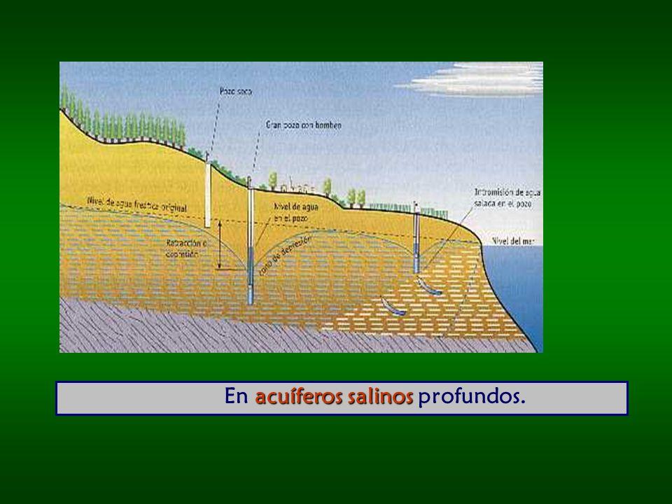 acuíferos salinos En acuíferos salinos profundos.