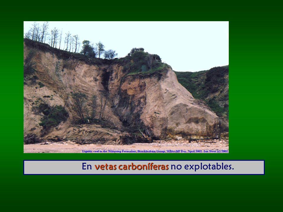 vetas carboníferas En vetas carboníferas no explotables.