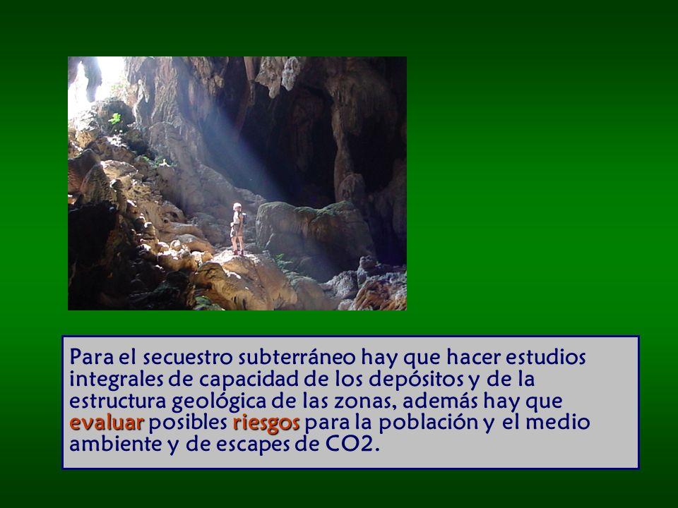 evaluar riesgos Para el secuestro subterráneo hay que hacer estudios integrales de capacidad de los depósitos y de la estructura geológica de las zonas, además hay que evaluar posibles riesgos para la población y el medio ambiente y de escapes de CO2.