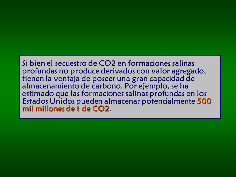 500 mil millones de t de CO2 Si bien el secuestro de CO2 en formaciones salinas profundas no produce derivados con valor agregado, tienen la ventaja de poseer una gran capacidad de almacenamiento de carbono.