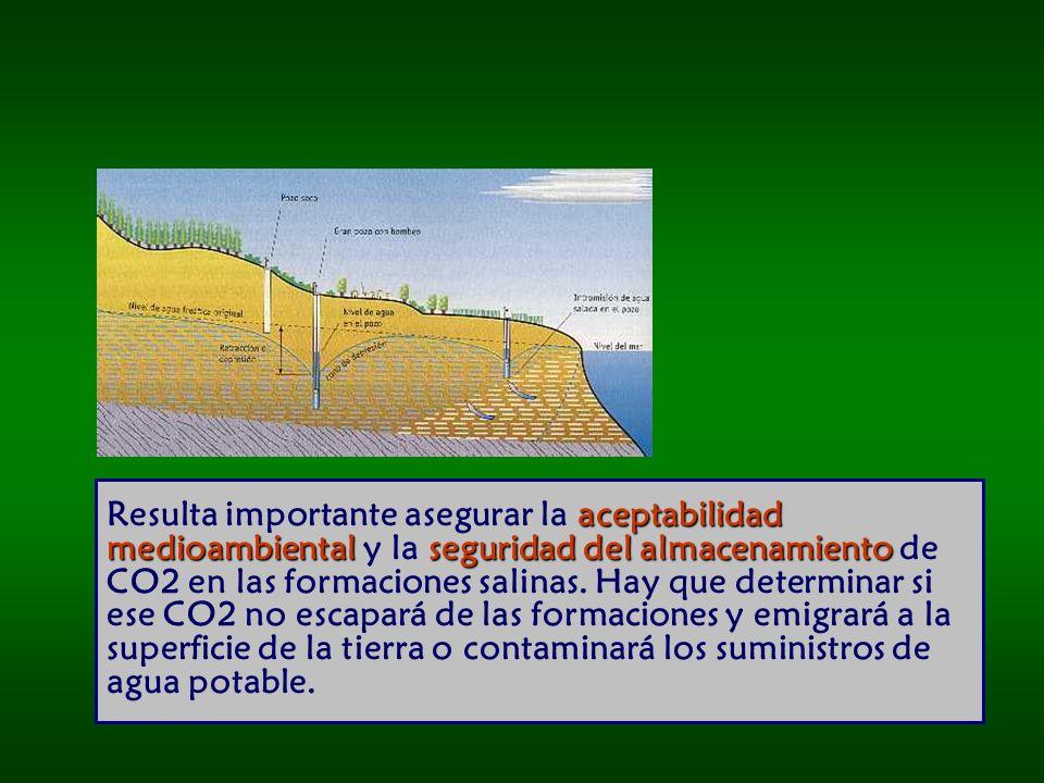 aceptabilidad medioambiental seguridad del almacenamiento Resulta importante asegurar la aceptabilidad medioambiental y la seguridad del almacenamiento de CO2 en las formaciones salinas.