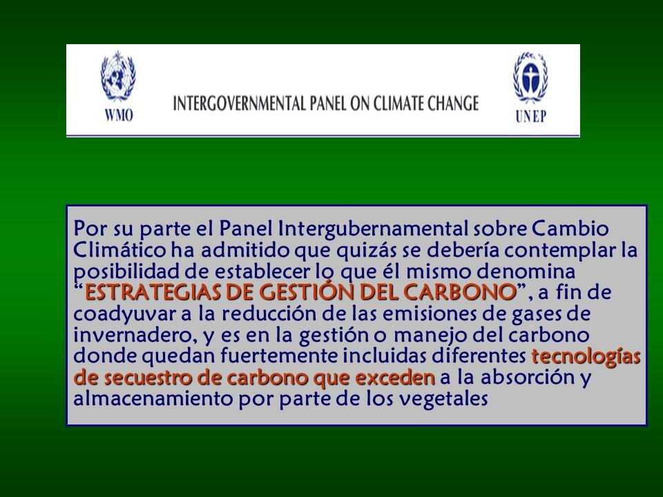 10.000´s 100´s a 1000´s 100´s 10´s a 100´s 10´s Utilización Menos de 1 GtC/año Capacidad Global de los Potenciales Sitios de Almacenamiento de CO2 en GtC.