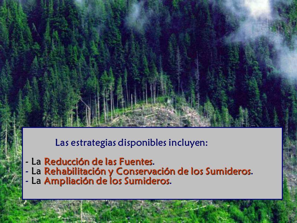 Reducción de las Fuentes Rehabilitación y Conservación de los Sumideros Ampliación de los Sumideros Las estrategias disponibles incluyen: - La Reducción de las Fuentes.
