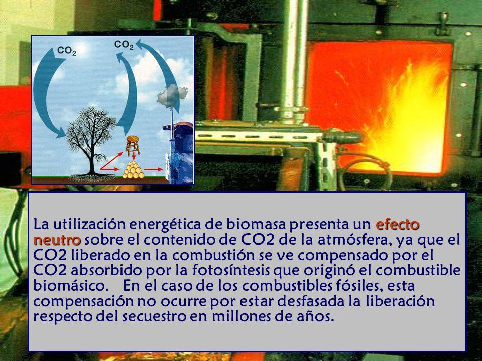 efecto neutro La utilización energética de biomasa presenta un efecto neutro sobre el contenido de CO2 de la atmósfera, ya que el CO2 liberado en la combustión se ve compensado por el CO2 absorbido por la fotosíntesis que originó el combustible biomásico.