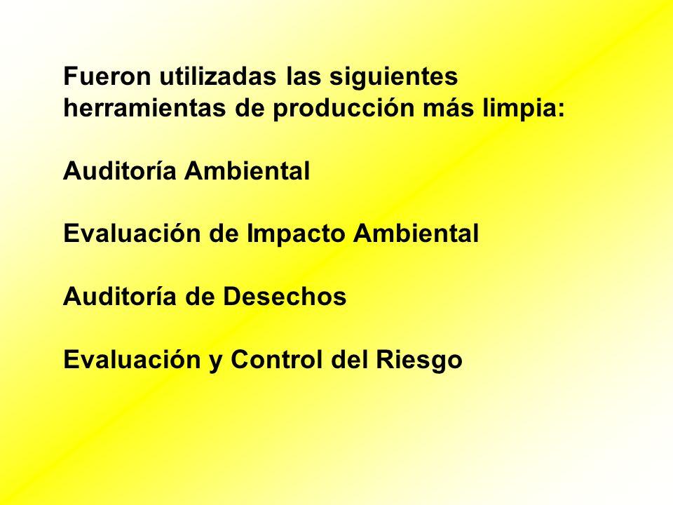 Fueron utilizadas las siguientes herramientas de producción más limpia: Auditoría Ambiental Evaluación de Impacto Ambiental Auditoría de Desechos Eval
