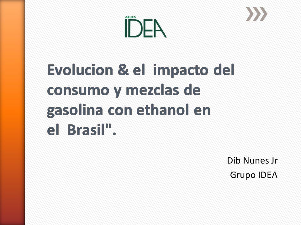 Dib Nunes Jr Grupo IDEA
