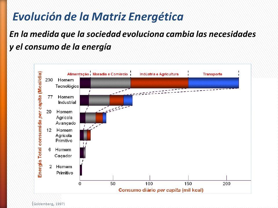 Evolución de la Matriz Energética En la medida que la sociedad evoluciona cambia las necesidades y el consumo de la energía ( Goldemberg, 1997)
