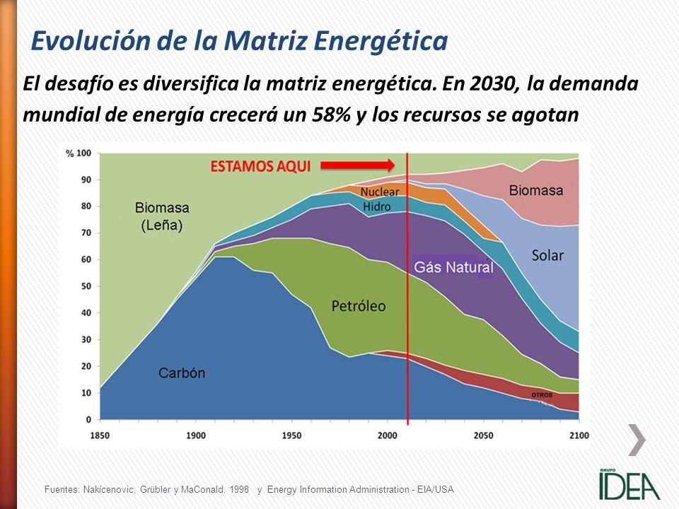 Evolución de la Matriz Energética El desafío es diversifica la matriz energética. En 2030, la demanda mundial de energía crecerá un 58% y los recursos