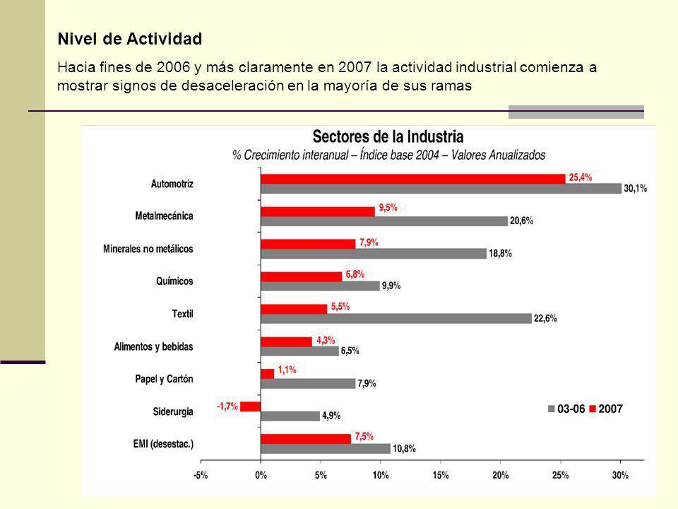 Nivel de Actividad Hacia fines de 2006 y más claramente en 2007 la actividad industrial comienza a mostrar signos de desaceleración en la mayoría de sus ramas