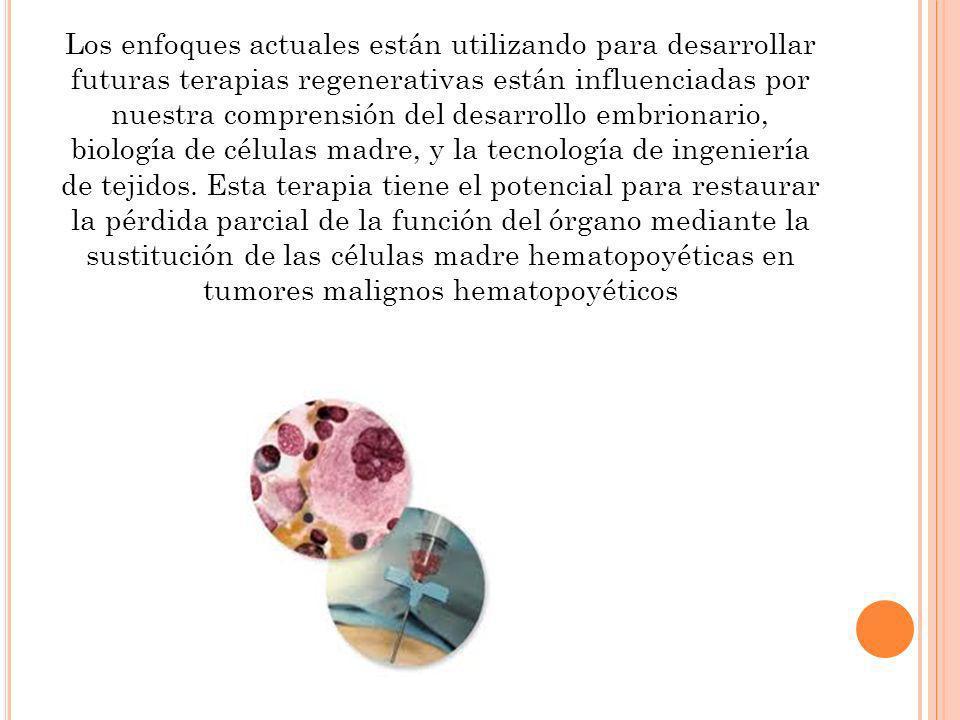 Los enfoques actuales están utilizando para desarrollar futuras terapias regenerativas están influenciadas por nuestra comprensión del desarrollo embrionario, biología de células madre, y la tecnología de ingeniería de tejidos.