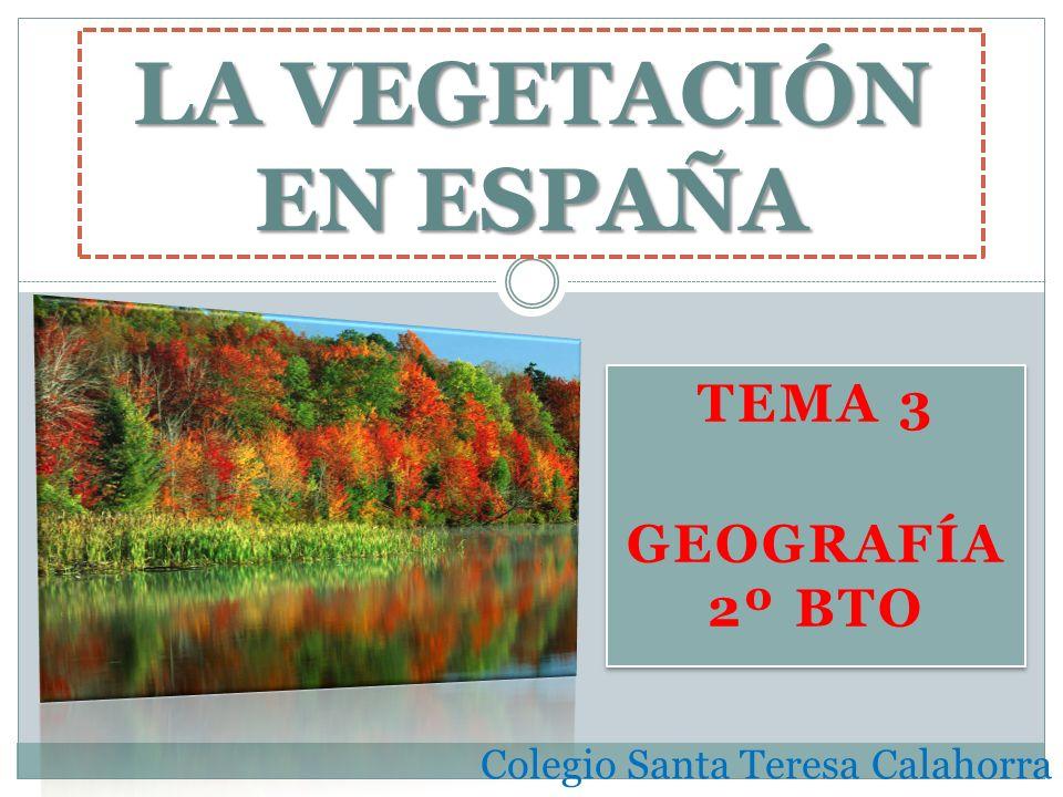 TEMA 3 GEOGRAFÍA 2º BTO TEMA 3 GEOGRAFÍA 2º BTO LA VEGETACIÓN EN ESPAÑA Colegio Santa Teresa Calahorra