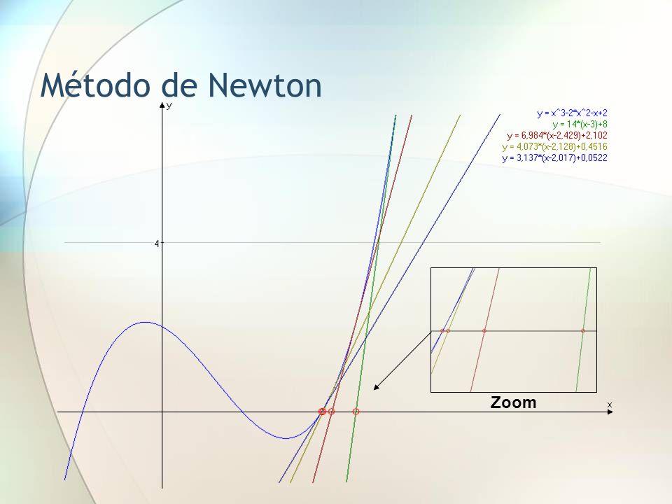 Método de Newton Zoom