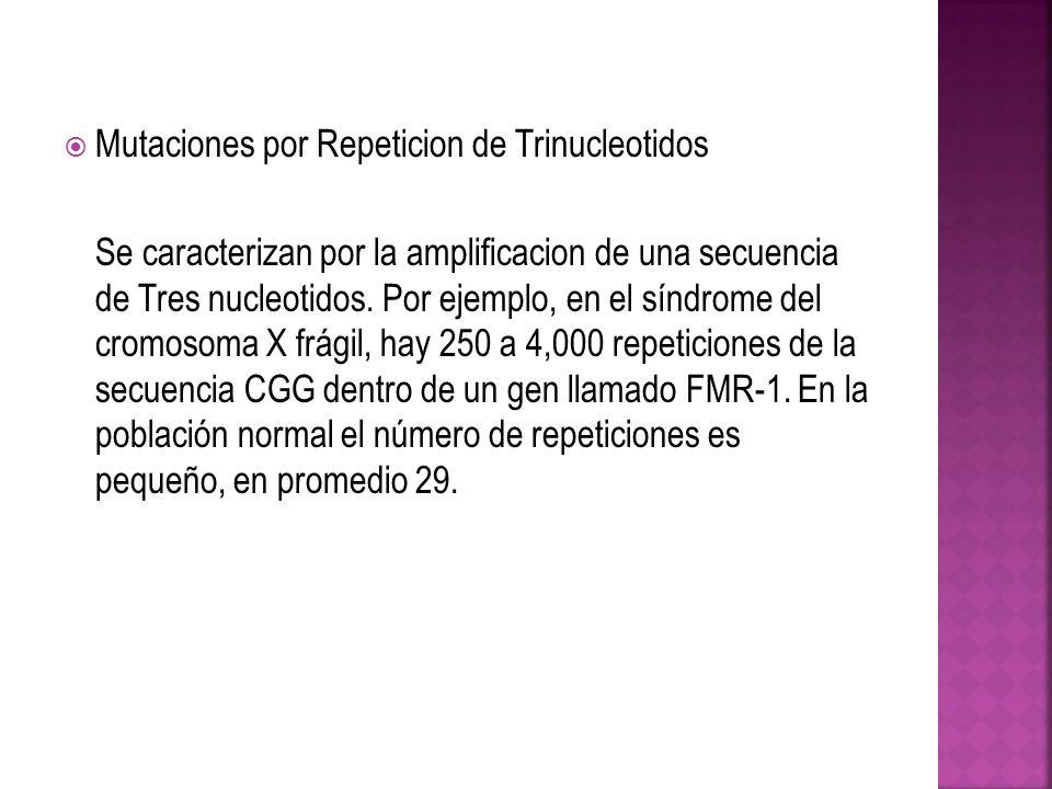 Mutaciones por Repeticion de Trinucleotidos Se caracterizan por la amplificacion de una secuencia de Tres nucleotidos. Por ejemplo, en el síndrome del