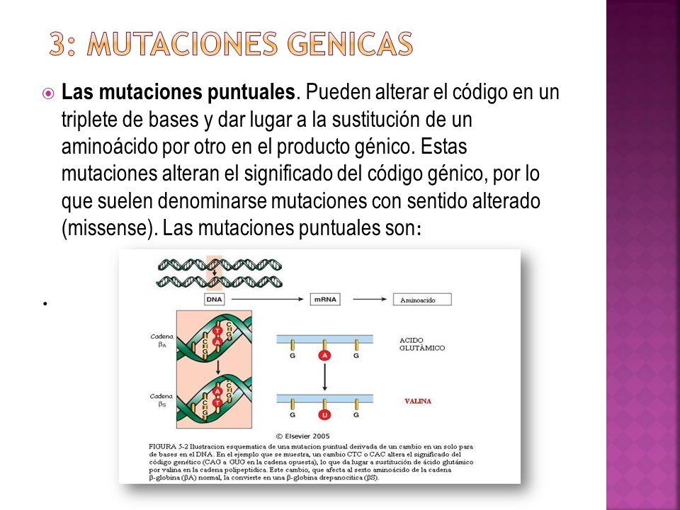 Las mutaciones puntuales. Pueden alterar el código en un triplete de bases y dar lugar a la sustitución de un aminoácido por otro en el producto génic