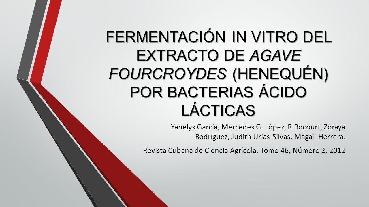 FERMENTACIÓN IN VITRO DEL EXTRACTO DE AGAVE FOURCROYDES (HENEQUÉN) POR BACTERIAS ÁCIDO LÁCTICAS Yanelys García, Mercedes G. López, R Bocourt, Zoraya R