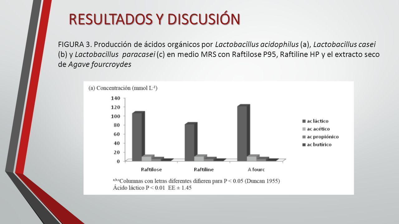 FIGURA 3. Producción de ácidos orgánicos por Lactobacillus acidophilus (a), Lactobacillus casei (b) y Lactobacillus paracasei (c) en medio MRS con Raf