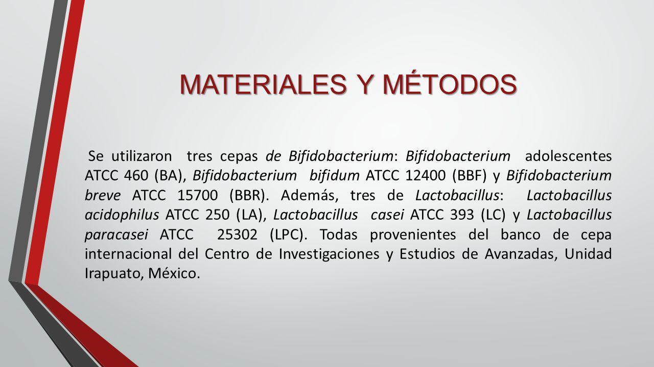 MATERIALES Y MÉTODOS Se utilizaron tres cepas de Bifidobacterium: Bifidobacterium adolescentes ATCC 460 (BA), Bifidobacterium bifidum ATCC 12400 (BBF)