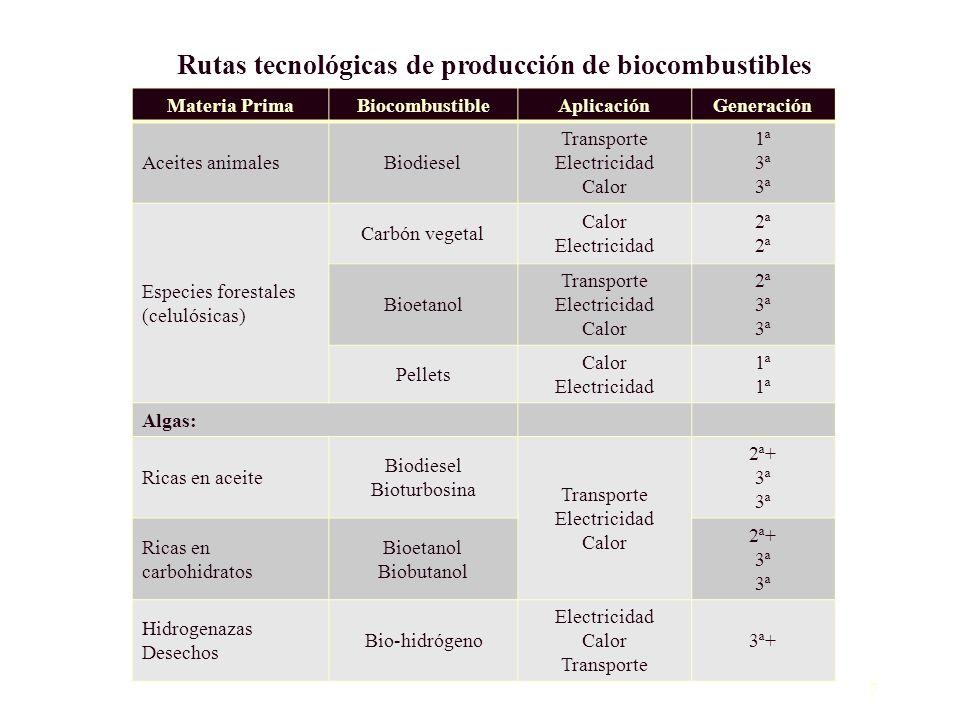 7 Rutas tecnológicas de producción de biocombustibles Materia PrimaBiocombustibleAplicaciónGeneración Aceites animalesBiodiesel Transporte Electricida