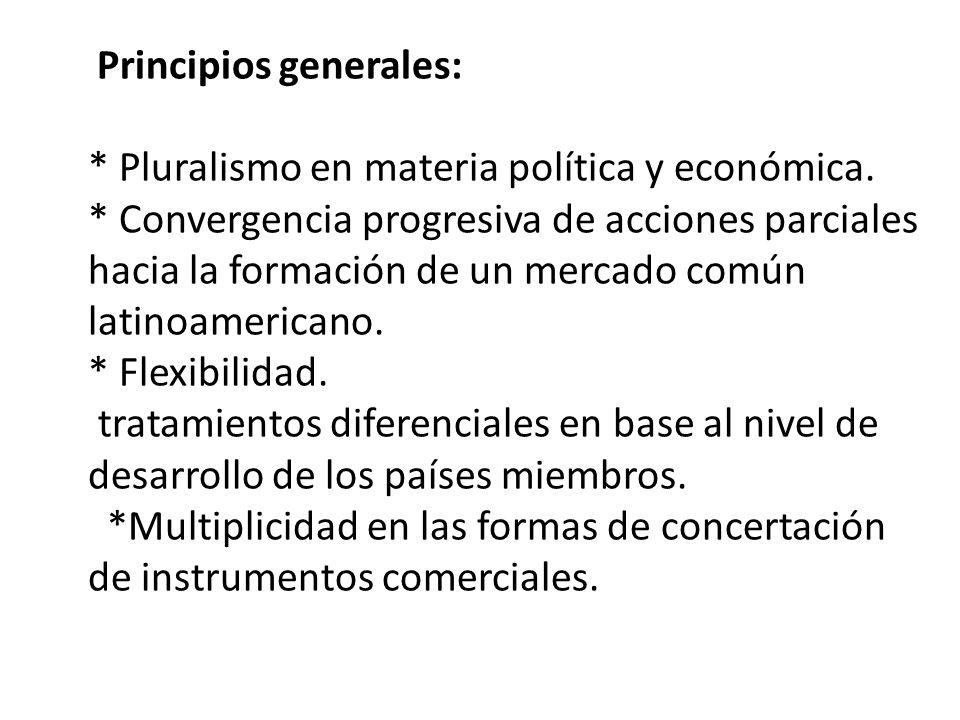 Principios generales: * Pluralismo en materia política y económica. * Convergencia progresiva de acciones parciales hacia la formación de un mercado c