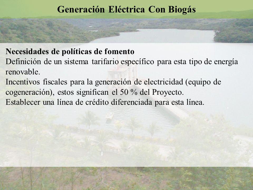 Necesidades de políticas de fomento Definición de un sistema tarifario específico para esta tipo de energía renovable. Incentivos fiscales para la gen