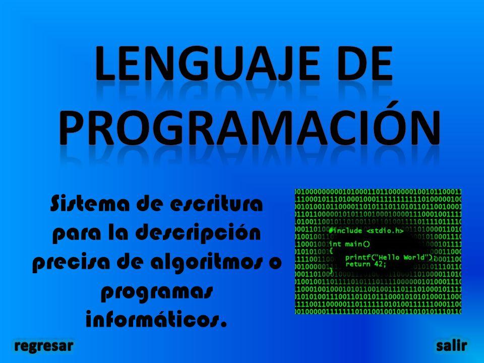 Sistema de escritura para la descripción precisa de algoritmos o programas informáticos.