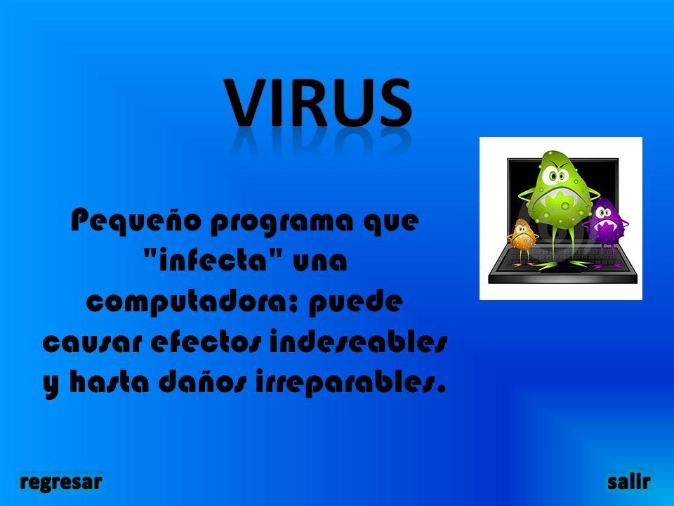 Pequeño programa que infecta una computadora; puede causar efectos indeseables y hasta daños irreparables.