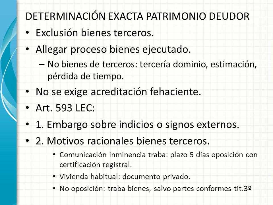 DETERMINACIÓN EXACTA PATRIMONIO DEUDOR Exclusión bienes terceros.