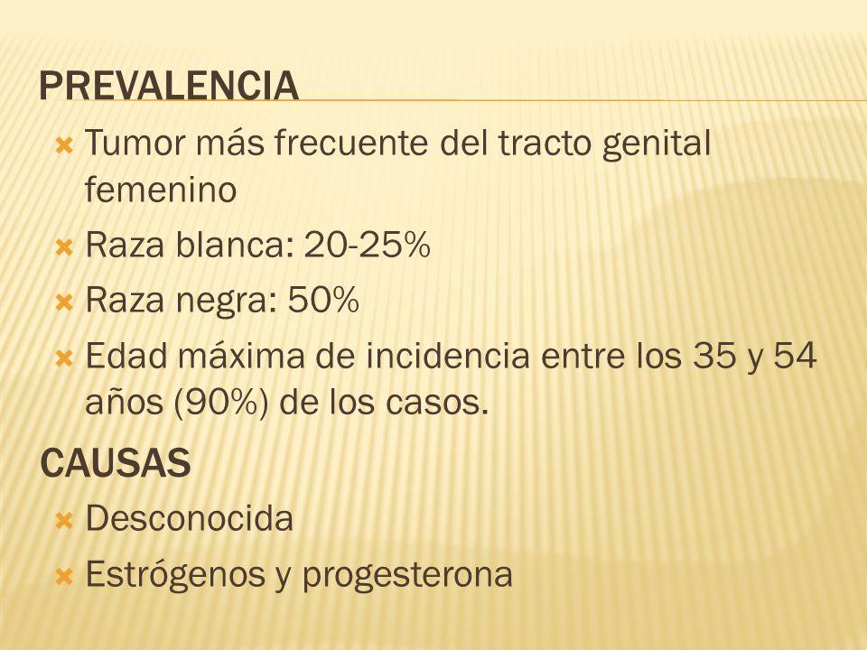 PREVALENCIA Tumor más frecuente del tracto genital femenino Raza blanca: 20-25% Raza negra: 50% Edad máxima de incidencia entre los 35 y 54 años (90%)