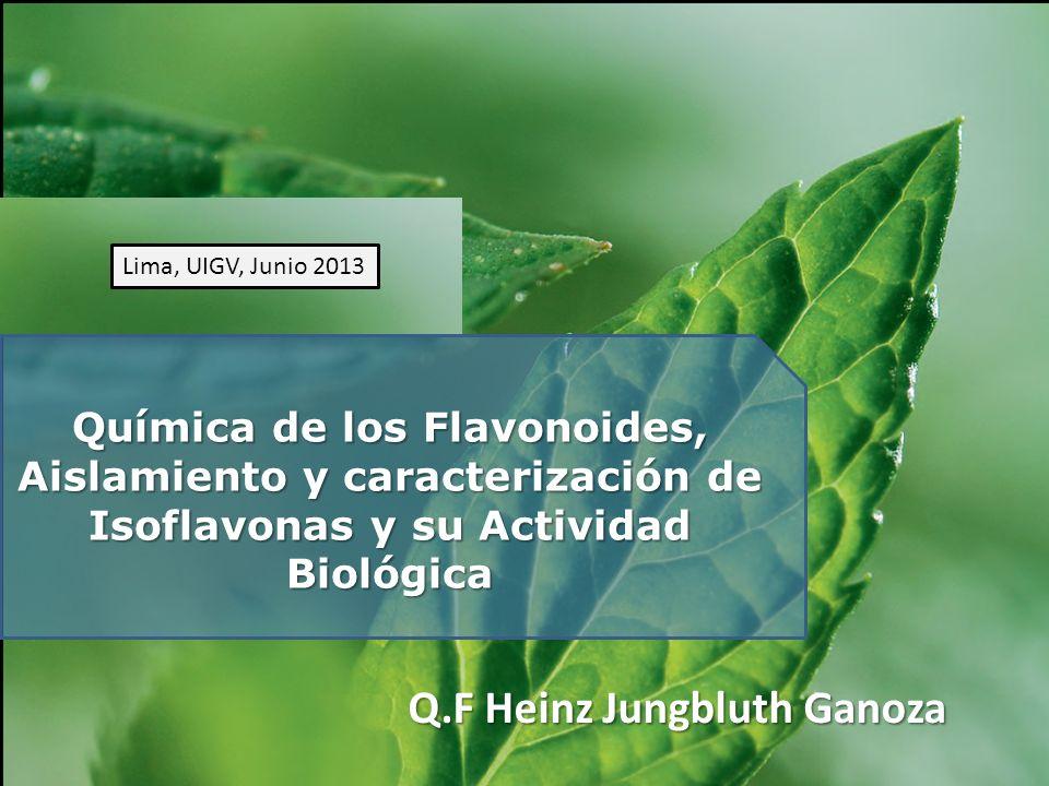 Química de los Flavonoides, Aislamiento y caracterización de Isoflavonas y su Actividad Biológica Q.F Heinz Jungbluth Ganoza Lima, UIGV, Junio 2013