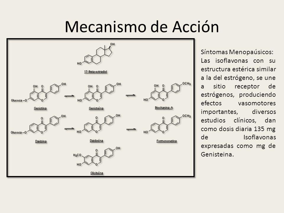 Mecanismo de Acción Síntomas Menopaúsicos: Las isoflavonas con su estructura estérica similar a la del estrógeno, se une a sitio receptor de estrógeno