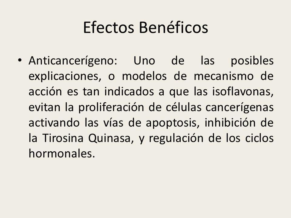 Efectos Benéficos Anticancerígeno: Uno de las posibles explicaciones, o modelos de mecanismo de acción es tan indicados a que las isoflavonas, evitan