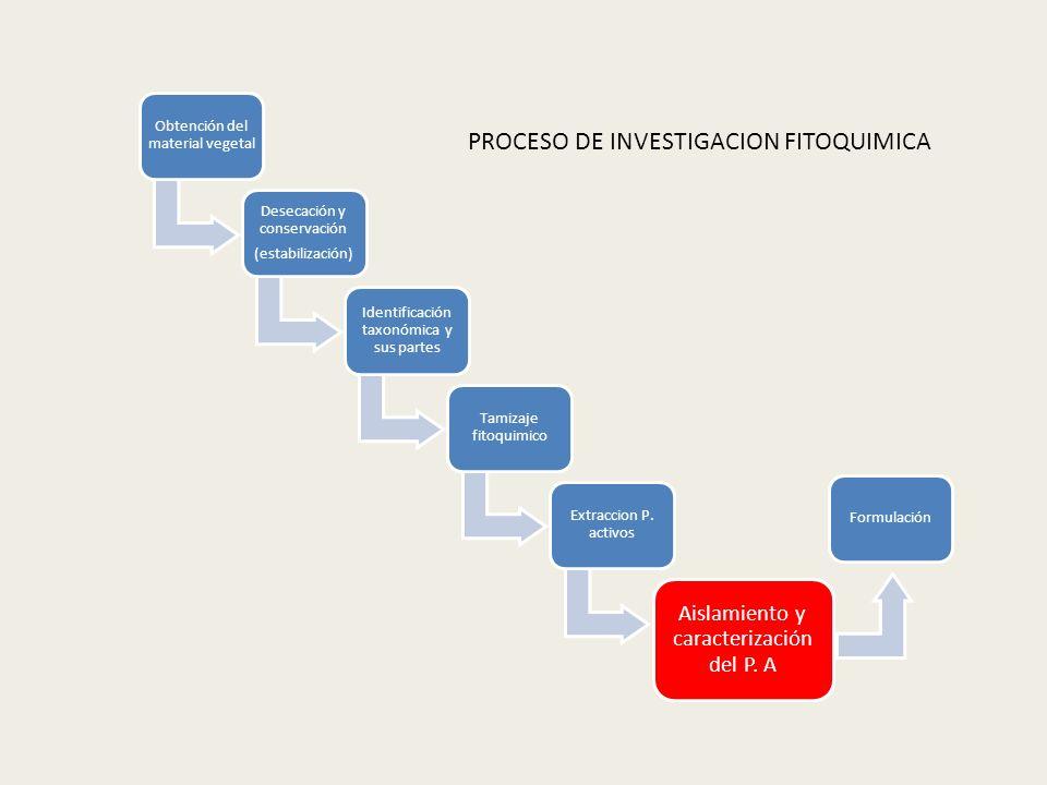 Obtención del material vegetal Desecación y conservación (estabilización) Identificación taxonómica y sus partes Tamizaje fitoquimico Extraccion P. ac