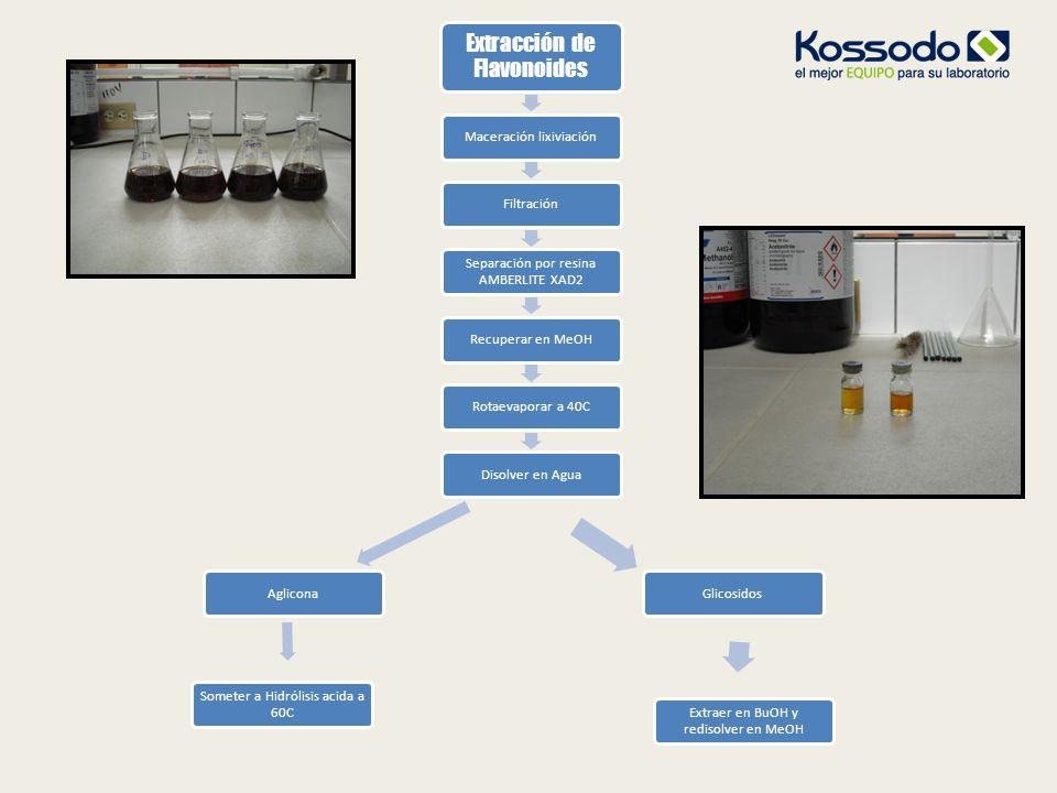 Extracción de Flavonoides Maceración lixiviaciónFiltración Separación por resina AMBERLITE XAD2 Recuperar en MeOHRotaevaporar a 40CDisolver en AguaAgl