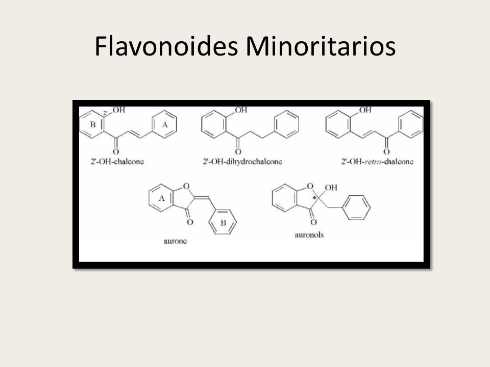 Flavonoides Minoritarios