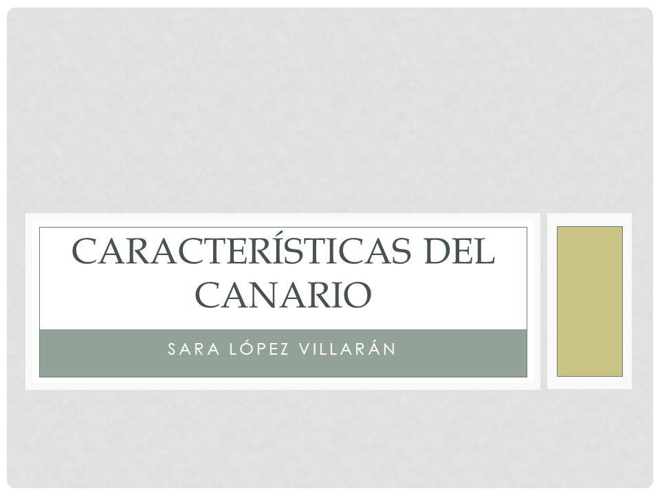 SARA LÓPEZ VILLARÁN CARACTERÍSTICAS DEL CANARIO