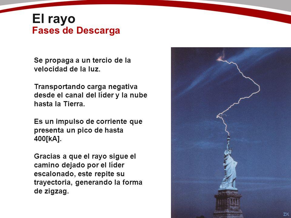 El rayo Fases de Descarga Se propaga a un tercio de la velocidad de la luz. Transportando carga negativa desde el canal del líder y la nube hasta la T