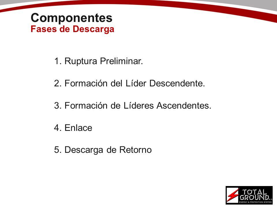 Componentes Fases de Descarga 1.Ruptura Preliminar. 2.Formación del Líder Descendente. 3.Formación de Líderes Ascendentes. 4.Enlace 5.Descarga de Reto