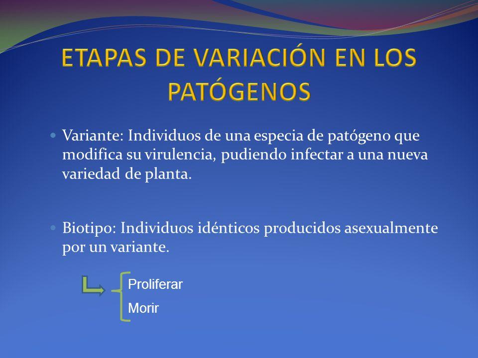 Variante: Individuos de una especia de patógeno que modifica su virulencia, pudiendo infectar a una nueva variedad de planta. Biotipo: Individuos idén