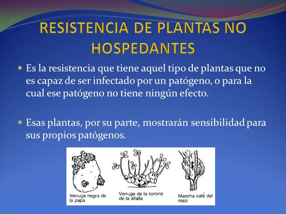 Es la resistencia que tiene aquel tipo de plantas que no es capaz de ser infectado por un patógeno, o para la cual ese patógeno no tiene ningún efecto